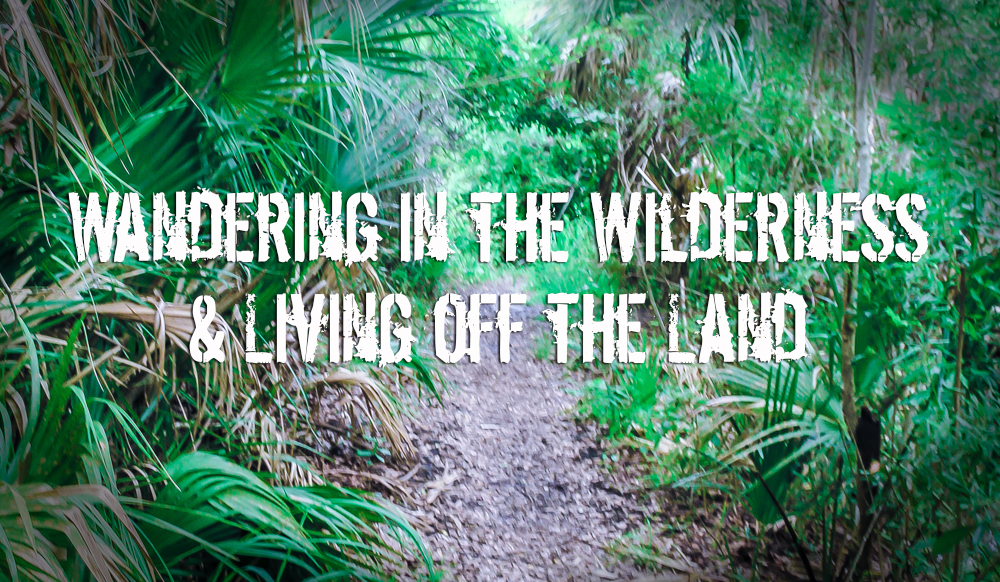 Wandering in the wilderness and living off the land.