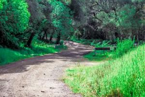 deserted-escape-route
