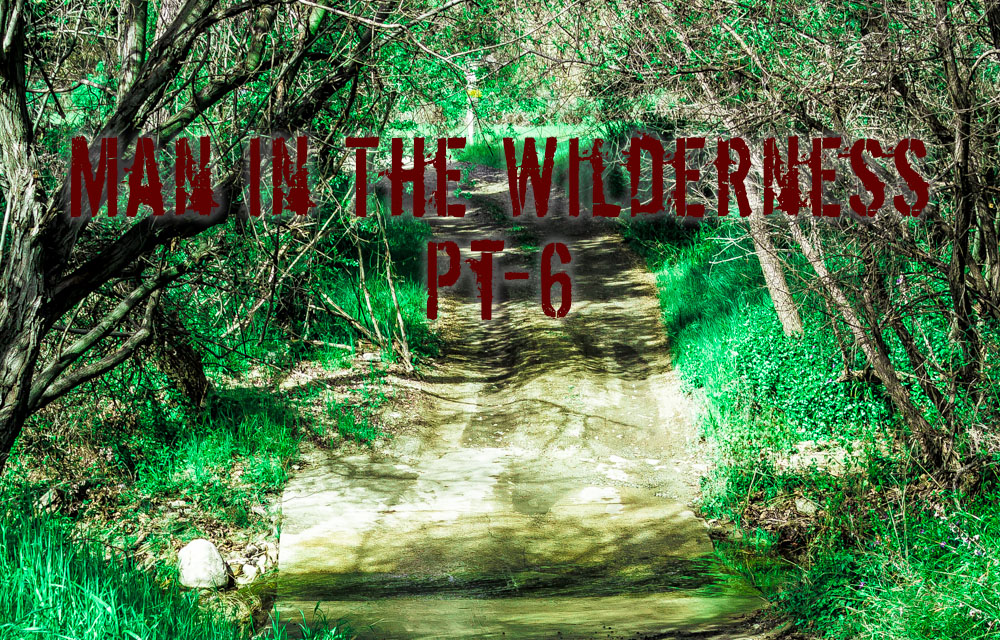 Man in the Wilderness – Pt-6