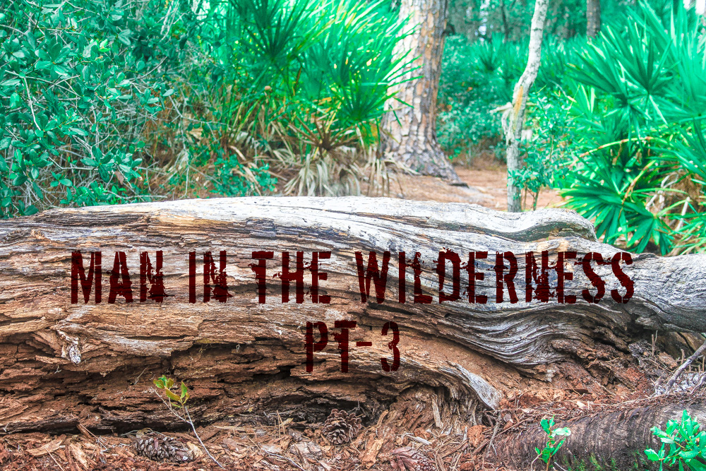 Man in the Wilderness – Pt-3