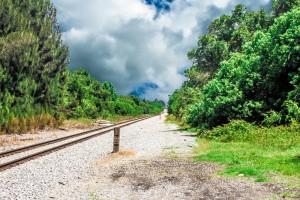 reconnaissance-on-the-tracks