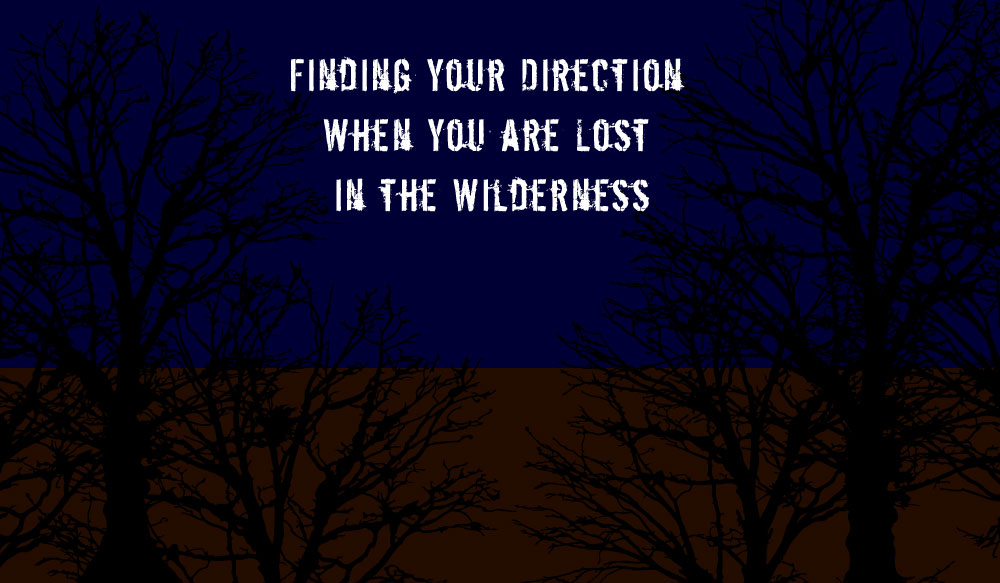 I'm Lost – It's Dark and I Don't Know How To Find What Direction I Need To Follow To Get Home Safely