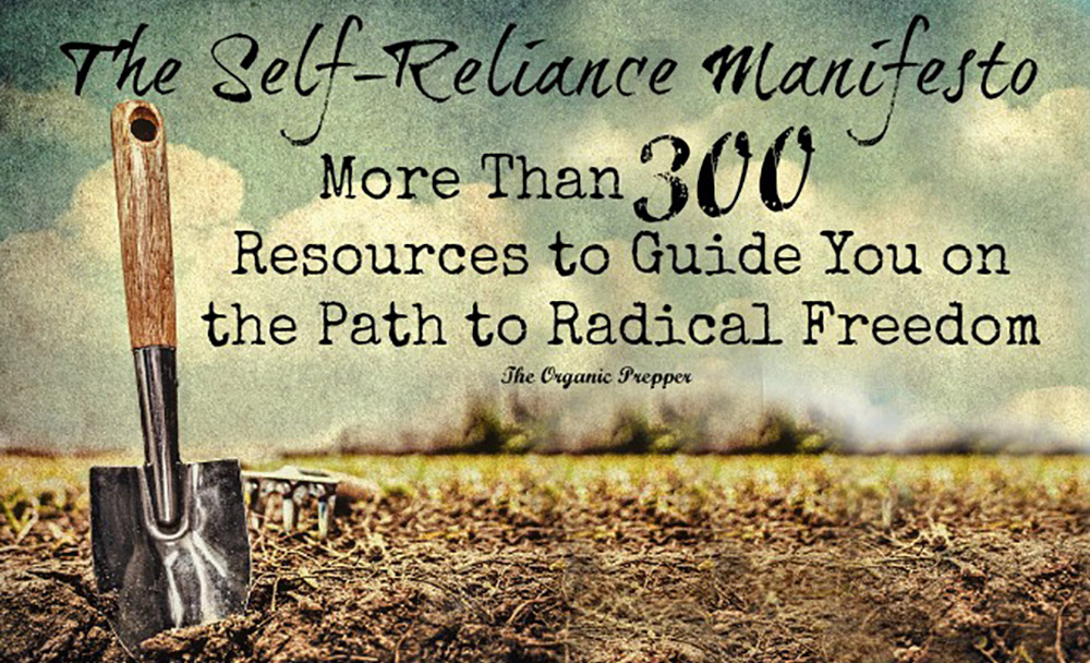 300 Resources to Guide You on the Path to Radical Freedom