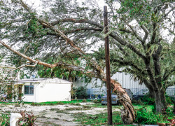 When Irma's SHTF: Lessons I Learned