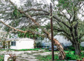 When Irma's SHTF: Lessons I Learned