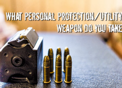 You Have Your Bug out Backpack What Personal Protection-Utility Weapon do you take with you?